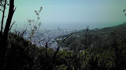 六甲山系201151534