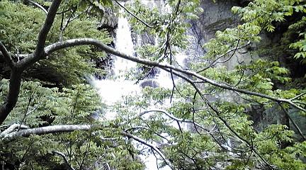 六甲山系201151531
