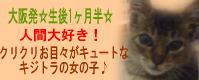 banner_eringi2.jpg