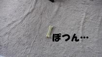 karubi 001