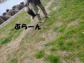 karubi 033