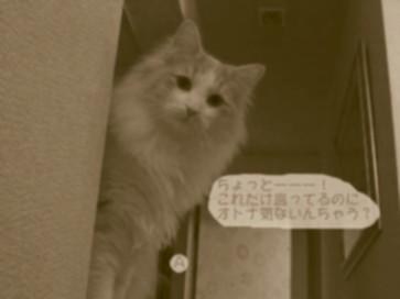 コピー ~ コピー ~ IMG_4175