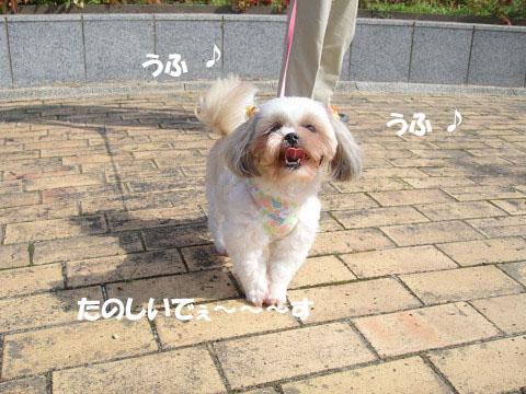 たのちぃ~ねぇ 0910040004のコピー