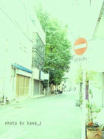 S6300132-2.jpg