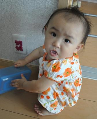 20110825 Inaiinai_5