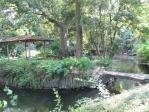 玉の池と東屋