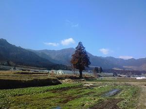 0228satoyama.jpg