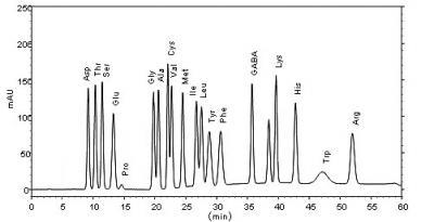 amino-bunseki.jpg
