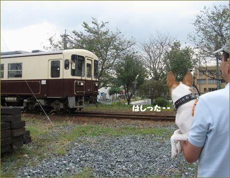 古い電車だね。