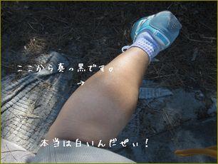 太い足を見せるな?って? すまん!