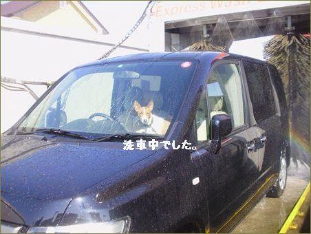 車の中で大騒ぎ!