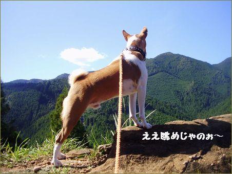 山道走って70キロ!