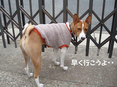寒かったので洋服を着ました。