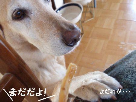 そんなのかんけぇ~ねぇ!!!