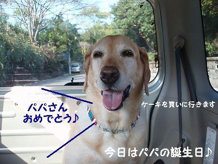 誕生日おめでとうございます。