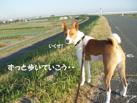 1時間のお散歩コースに出発!