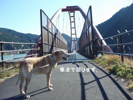 この橋の上はかぜがつよいのよ。