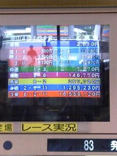 V6010162.jpg