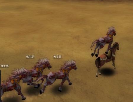 馬の生息地で馬だらけー