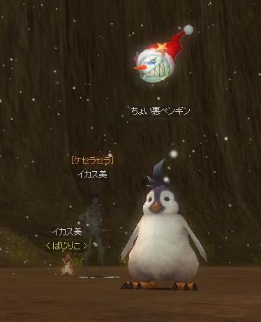 めげずにペンギンを探します