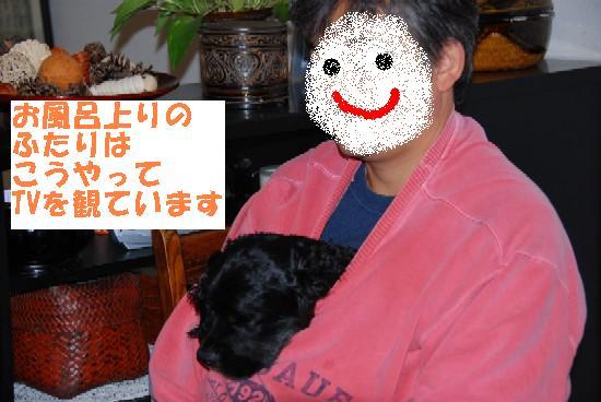20071121003749.jpg