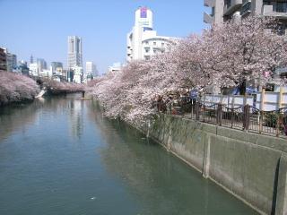 大岡川とランドマークタワー
