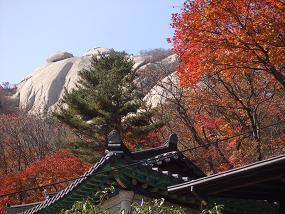 2007_1022yama.jpg