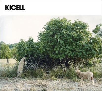 KCL_EP-.jpg