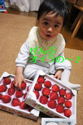 20110112DSC00689.jpg