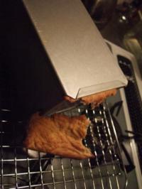 失敗パン2