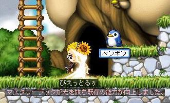 20071109214306.jpg
