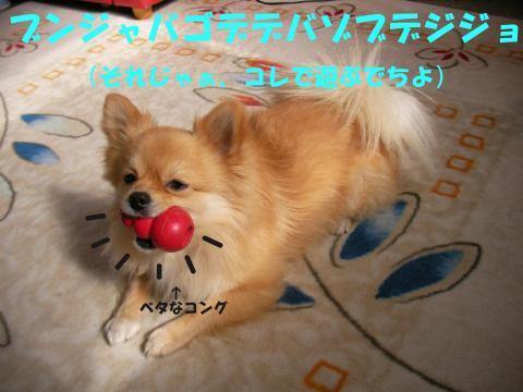 SA080224e_convert_20080227030504.jpg