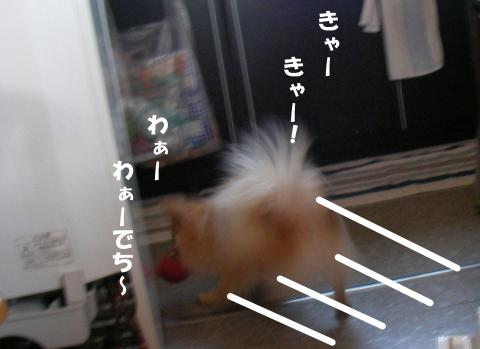 SA080225f2_convert_20080227031222.jpg