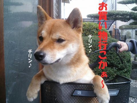 SW050103_convert_20080227185957.jpg