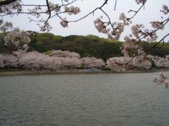 2007_0413_113320AA.jpg