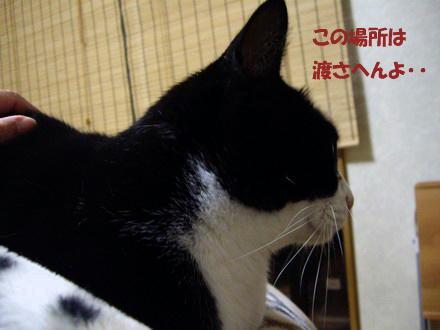 yuzurenai.jpg
