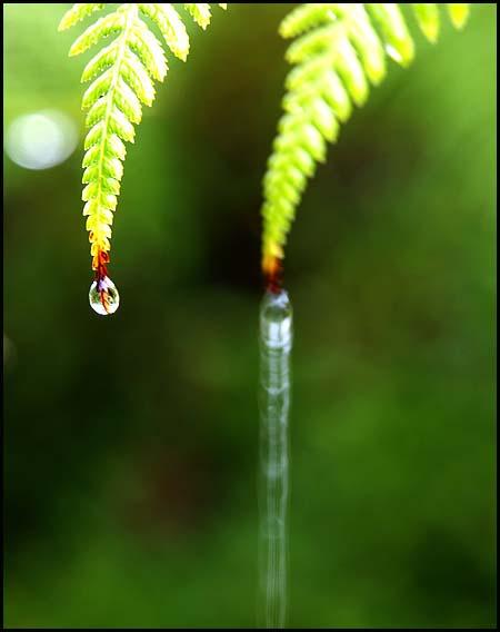 rain1014-12.jpg