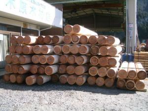 2008-03-01_19.jpg