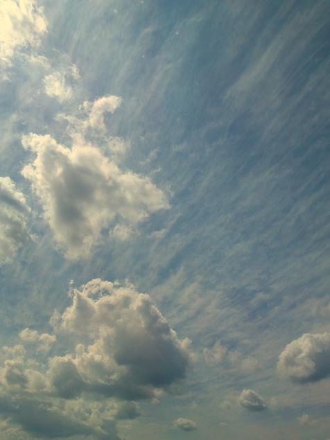 20090914-2.jpg