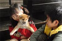 (C)2007 「マリと子犬の物語」製作委員会