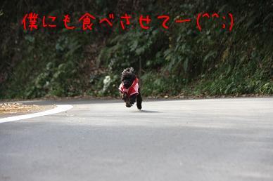 7NhHGPzX.jpg