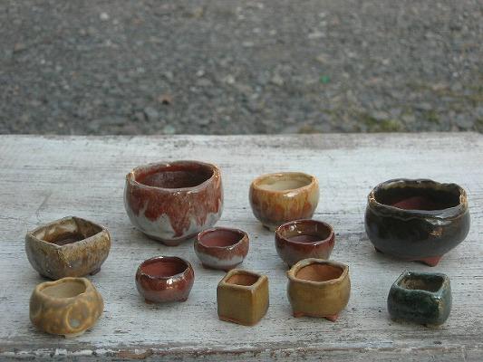 2011-2-24-2s.jpg