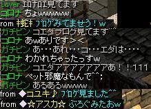 20070924005923.jpg