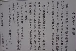 40_20110521075554.jpg