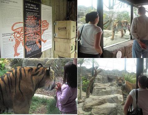 zoo1-10-22