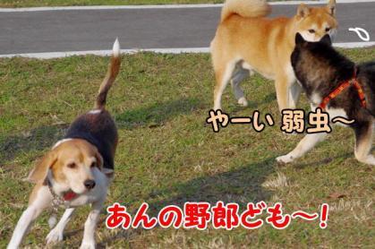 ヒーロー 6 いざ!