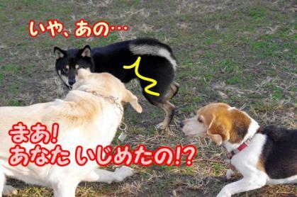 ヒーロー 8 まあ!