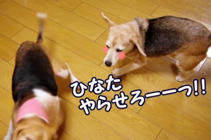 チャンス 10 うおおおおお!