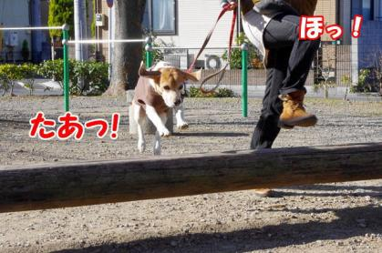ジャンプ 2 たあっ!