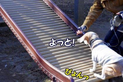 滑り台 2 ピョン